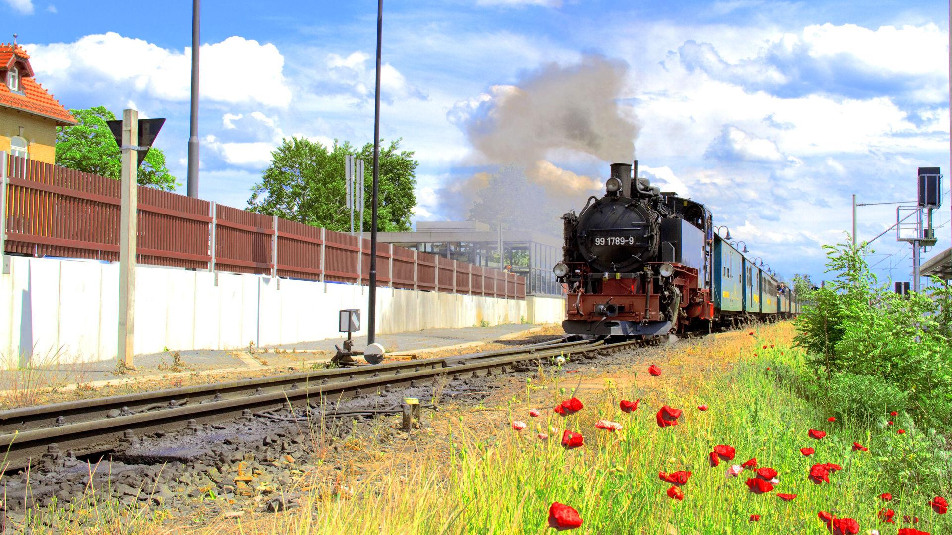 Steam Karte 20.Lößnitzgrundbahn Sdg Mbh Railway Company Dresden Elbe Region